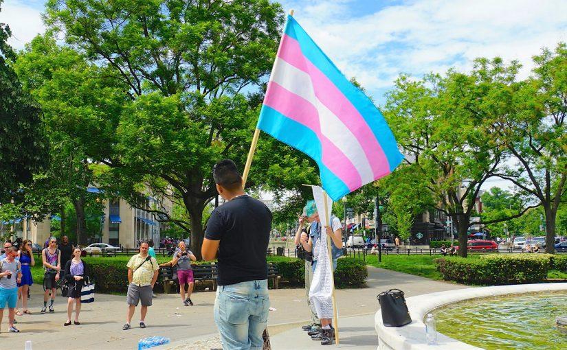 Projeto de lei que destina cotas para pessoas trans é barrado na CCJ