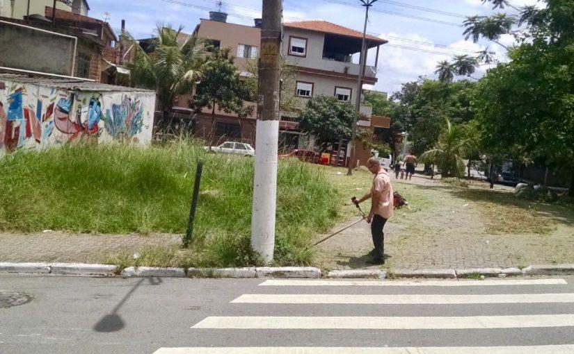 Comerciante desiste da Prefeitura e cuida de canteiro verde no Tremembé
