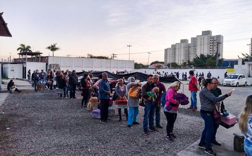 Madrugada de filas no hospital veterinário público de São Paulo