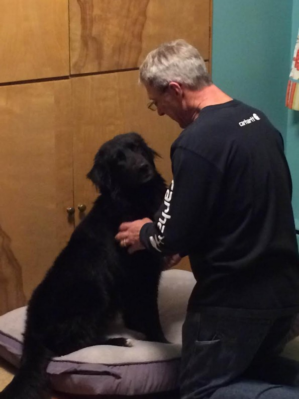 How one rescue dog found his way home with Roadie. When a family wanted to adopt a dog, they fell in love with Alex.
