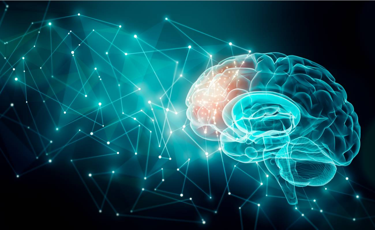 An illustration of a blue brain being hit by blue signals and hitting the front of the brain which has a red tint.