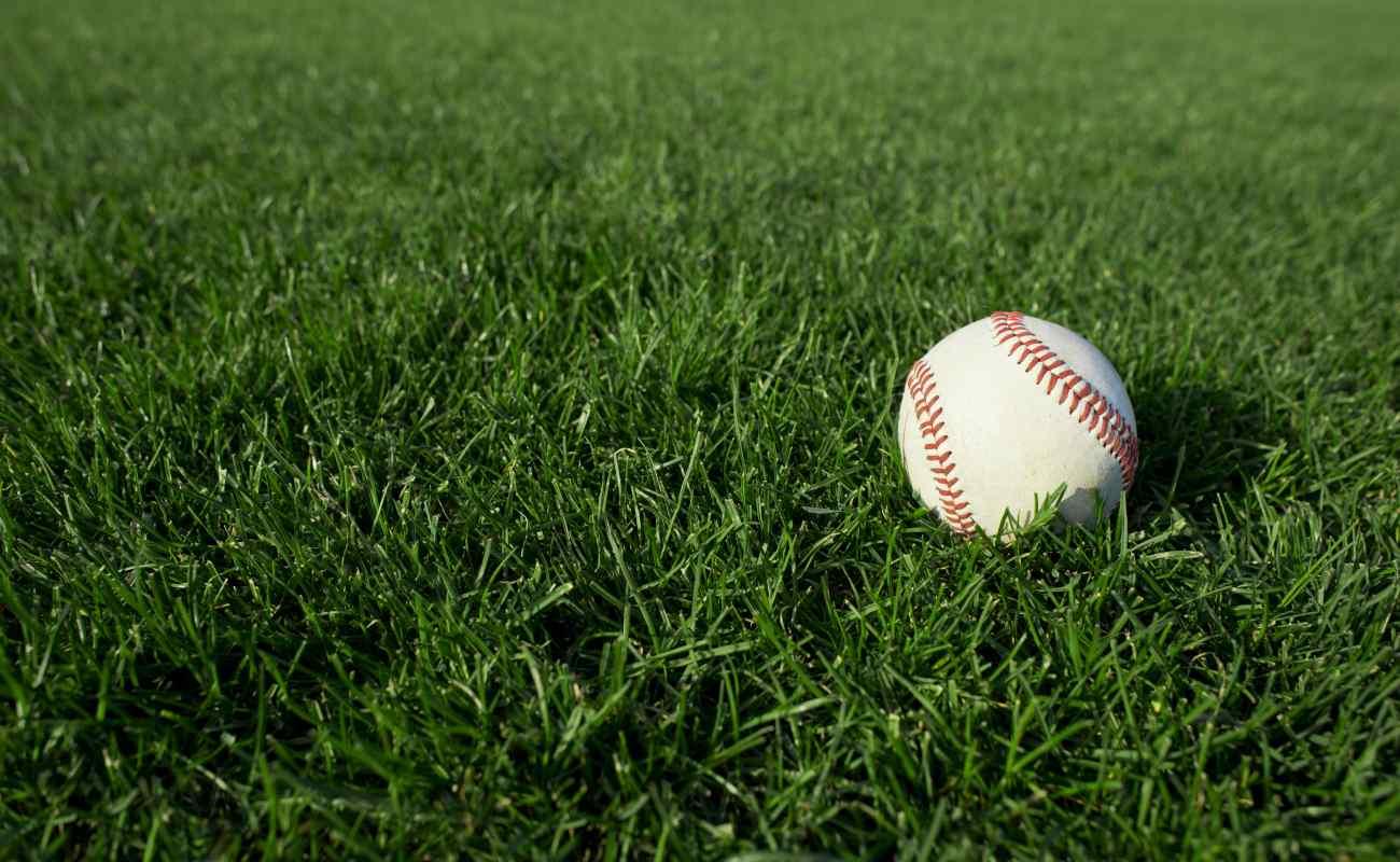 closeup of baseball on grass