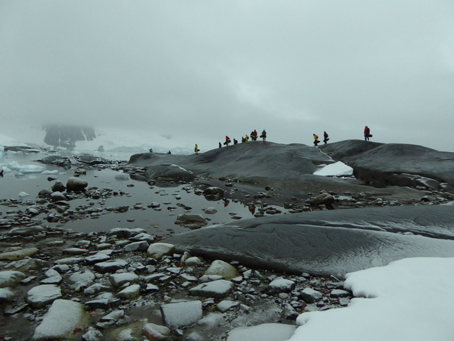 Photo in the album Antarctica