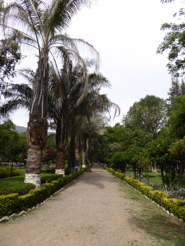 This is a free botanical garden. It was a bit run down in places, but still really nice.