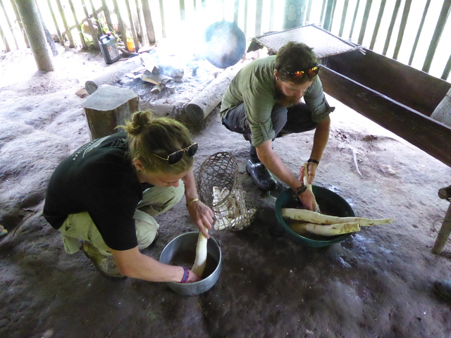 The next few photos are my group making a traditional flatbread from yuca (called cassava by english speakers, not to be confused with yucca, the desert succulent). First we washed the mud off the roots so we could grate them.