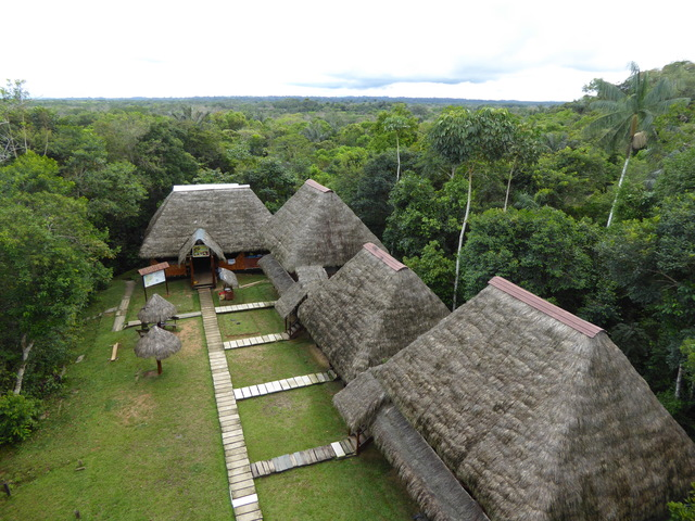 The view of our lodge from the top of the birdwatching tower.