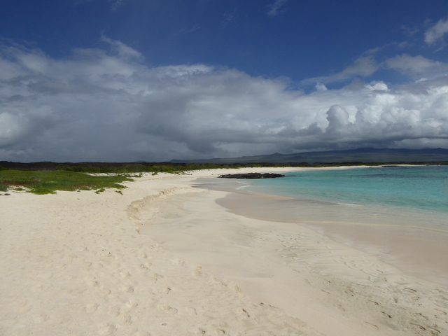 Photo in the album Galapagos