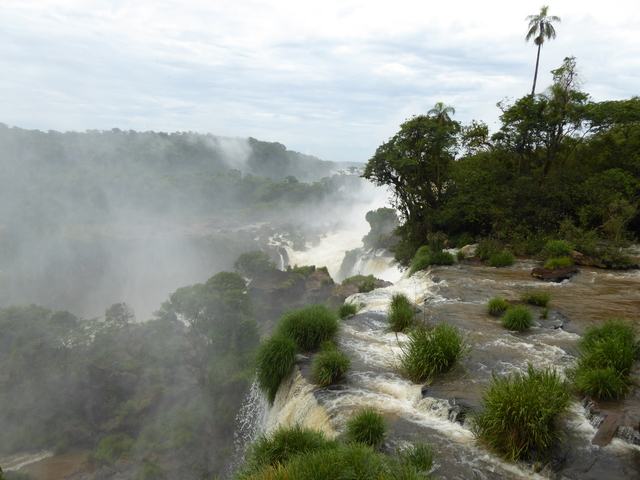 Photo in the album Iguazu