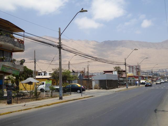 Photo in the album Iquique