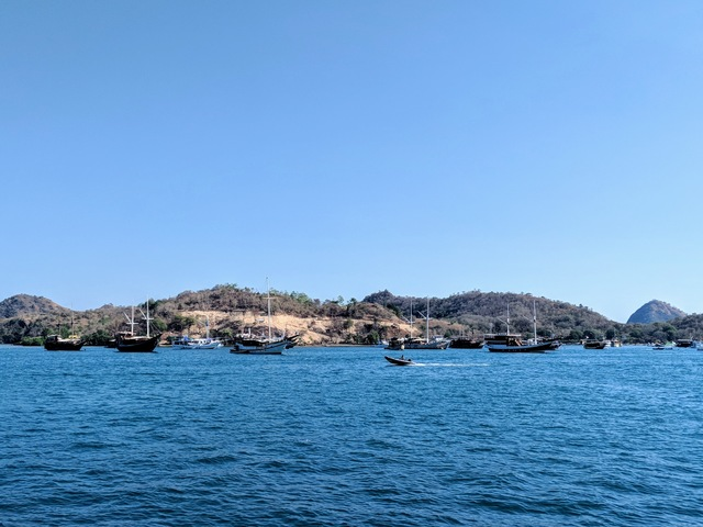 Photo in the album Komodo 2018