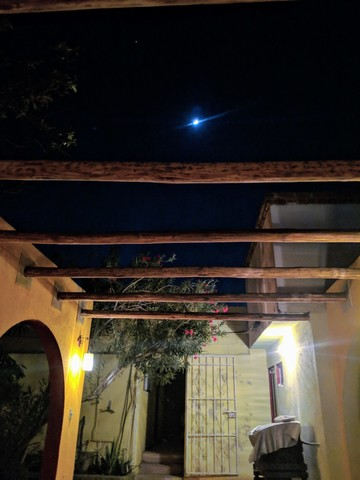 Our little courtyard at night. My phone couldn't capture the moon.