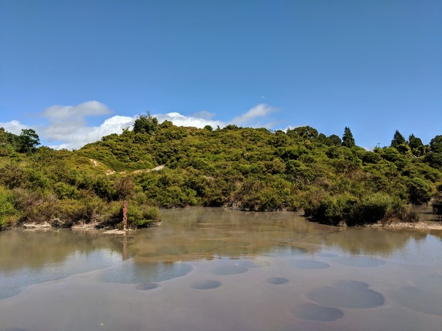 Photo in the album North Island - New Zealand 2018