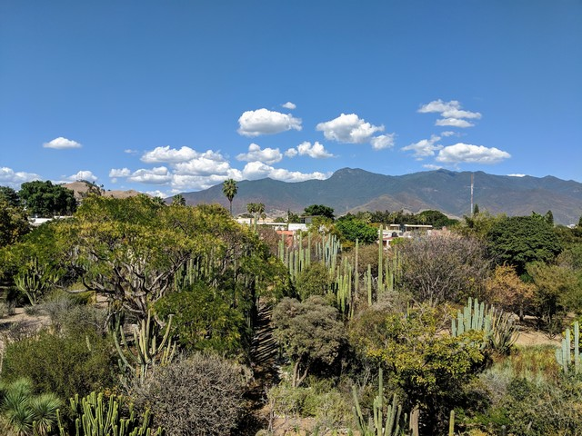 The landscape of Oaxaca, looking North from the second floor of Santo Domingo.