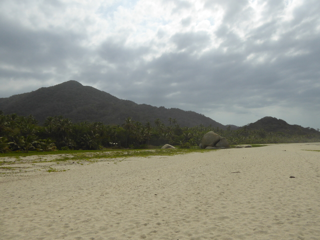 Photo in the album Tayrona & Palomino
