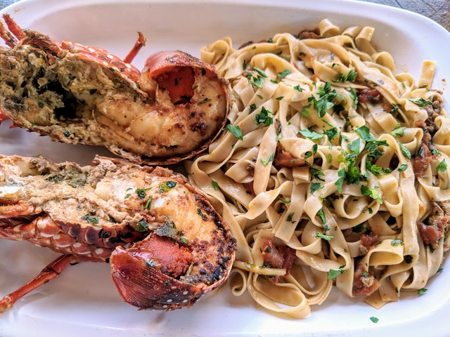 Grilled lobster with pasta, I think it was like $10?