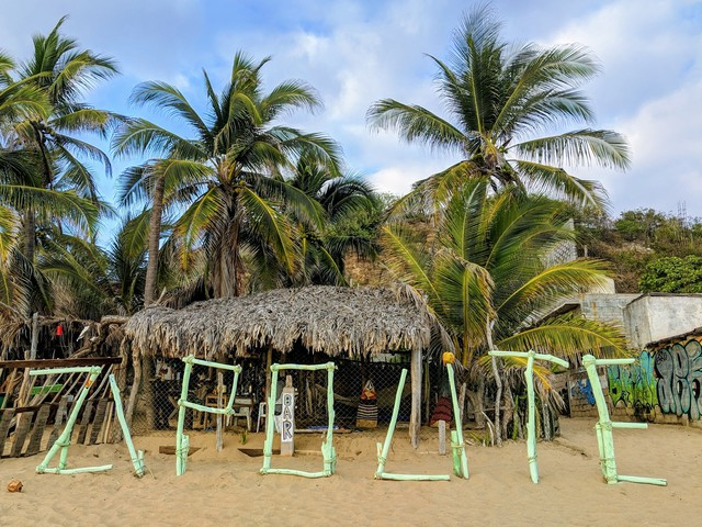 Photo in the album Zipolite 2019