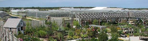 GardenCenterWide