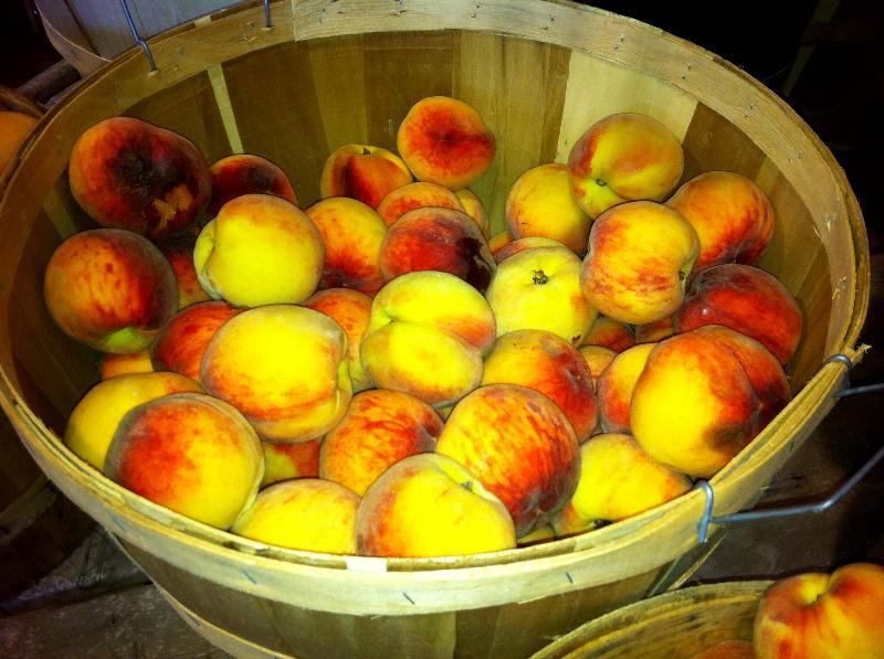 Massachusetts Peaches