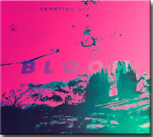 Cd Tauting Glaciers - Bloom
