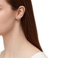Model Content for SLATE Crystal Spike Earrings