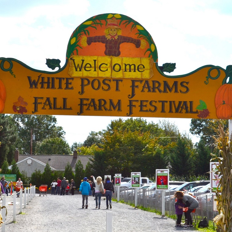 WIN a Family Ticket to White Post Farm