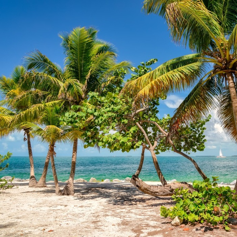 Win a trip to Key West, Florida