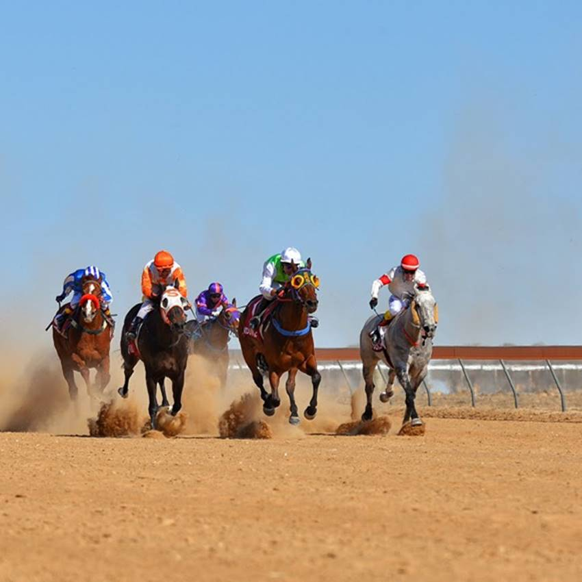 Win A Birdsville Races Double-Pass Package!