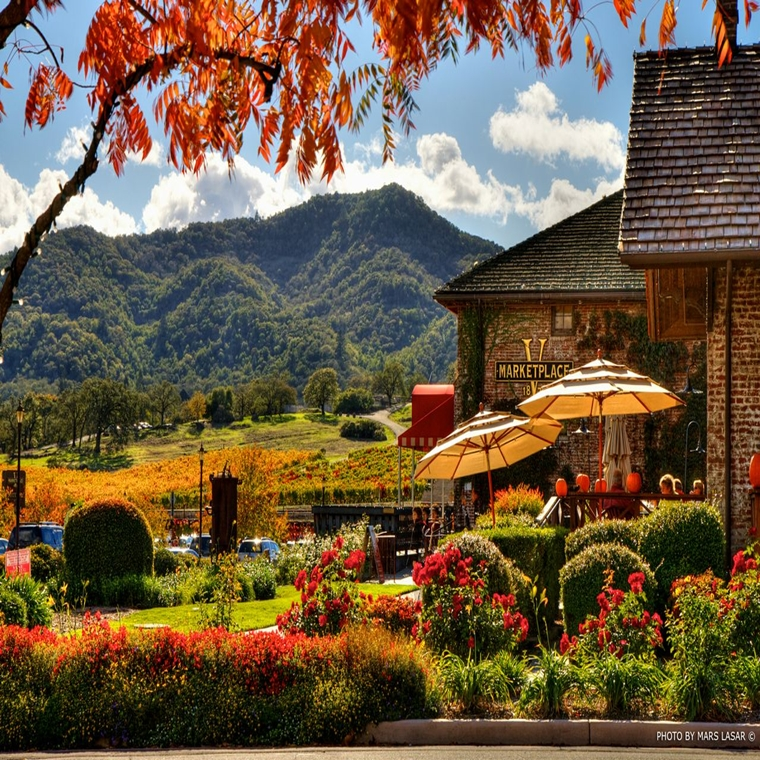 Win a trip to Napa Valley
