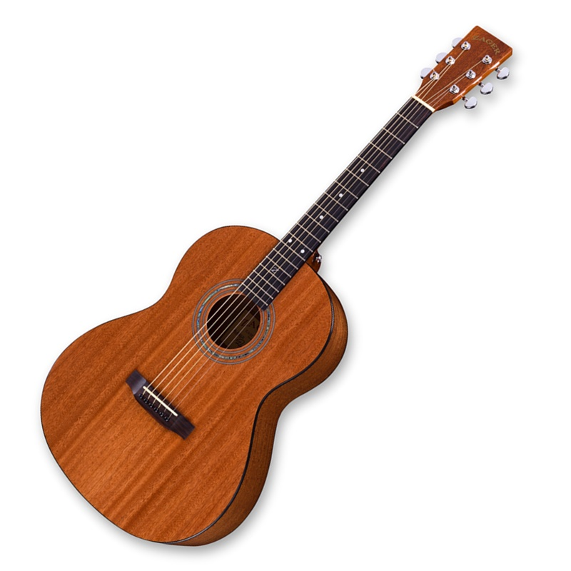 Win Zager Easy Play ZAD20E Acoustic Electric Guitar