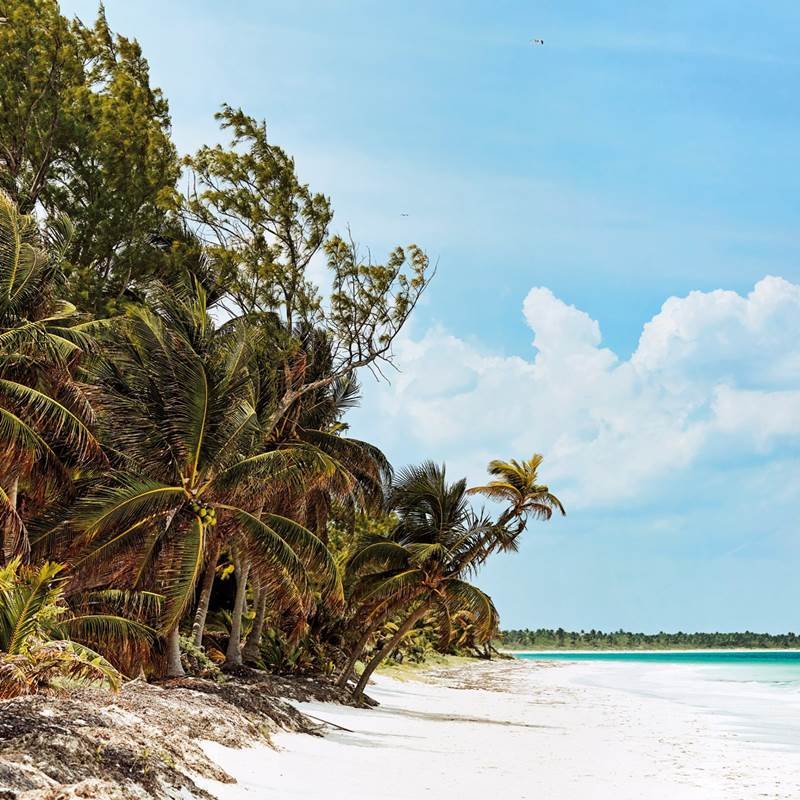 Win a Trip to Tulum, Mexico