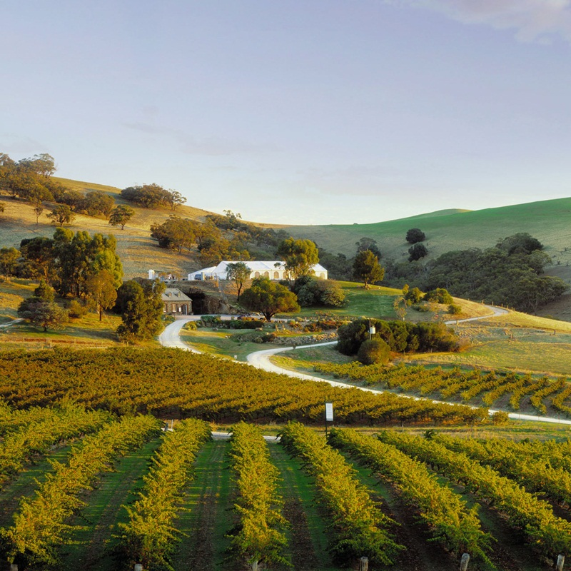 Win a Trip to Barossa