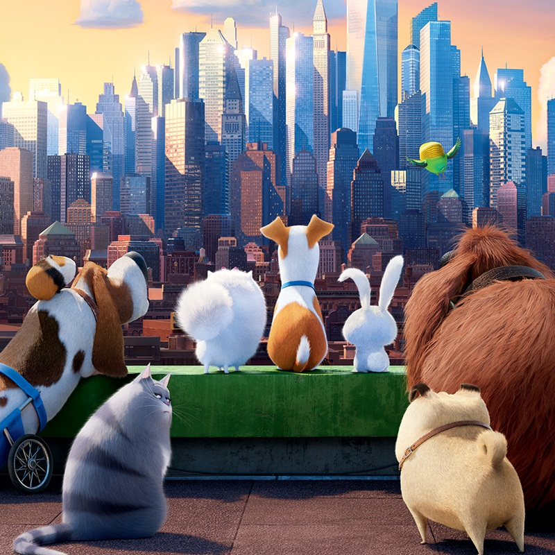 "Win a ""The Secret Life of Pets"" family passes"