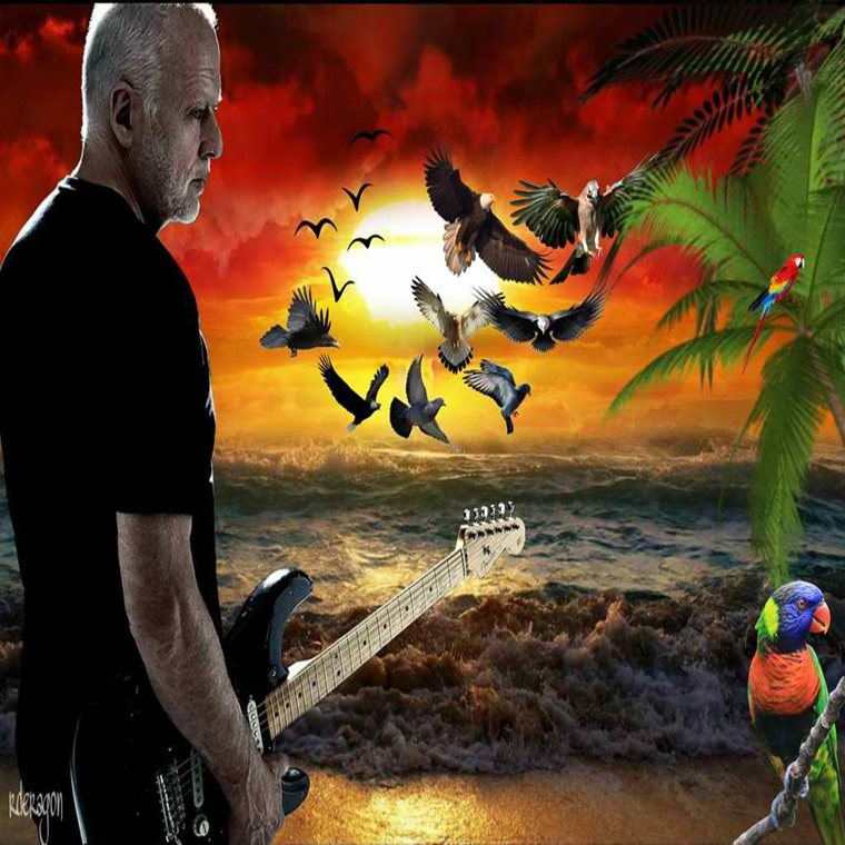 Win A Trip To David Gilmour Concert In Los Angeles