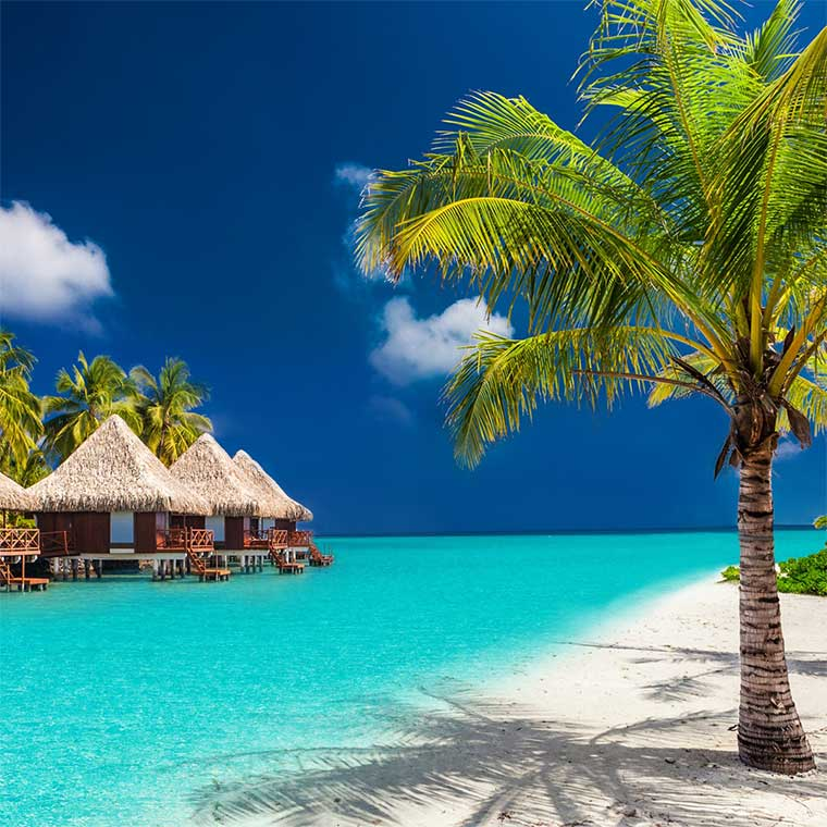 Fly away to Tahiti in style with 4 friends in 2017!