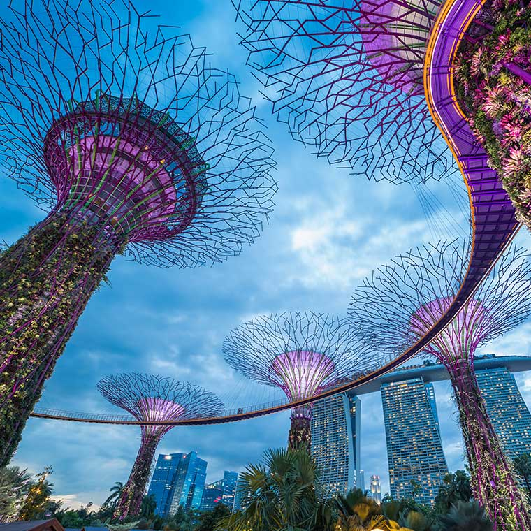 Fly and explore Singapore in style with 4 friends, thanks to Tomorro!