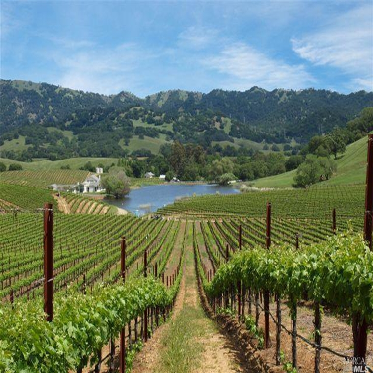 Win a trip to Napa, CA.