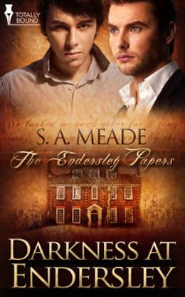 Darkness at Endersley by S.A. Meade