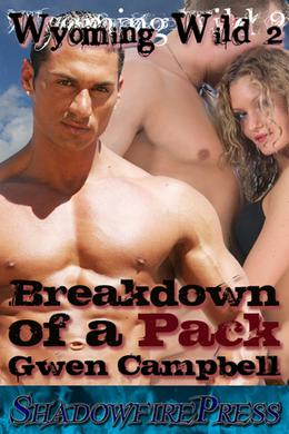 Breakdown Of A Pack by Gwen Campbell