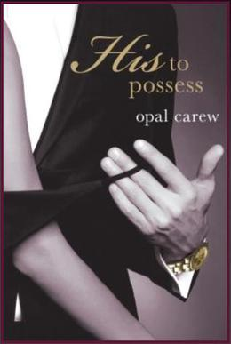 Perfect Storm by Opal Carew