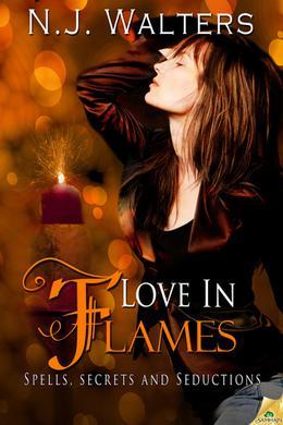 Love in Flames by N.J. Walters