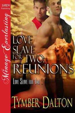 Love Slave for Two: Reunions by Tymber Dalton