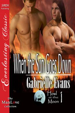 When the Sun Goes Down by Gabrielle Evans