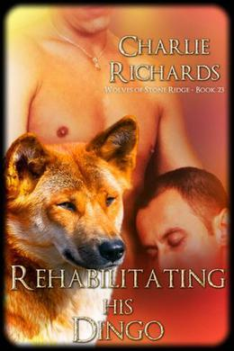 Rehabilitating his Dingo by Charlie Richards