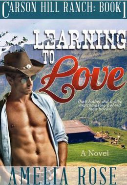 Learning To Love by Amelia Rose