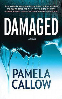 Damaged by Pamela Callow
