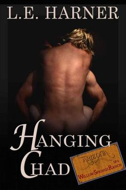 Hanging Chad by Laura Harner