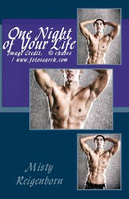 One Night of Your Life by Misty Reigenborn