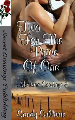 Two For The Price Of One by Sandy Sullivan