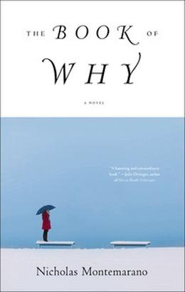 The Book of Why by Nicholas Montemarano