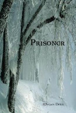 Prisoner by Megan Derr
